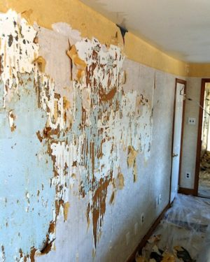 Multi-step wallpaper removal by LaffCo. Painting