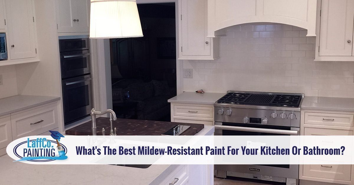 08 Janwhat Is The Best Mildew Resistant Paint For Your Kitchen Or Bathroom